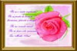 Felicitarea 025